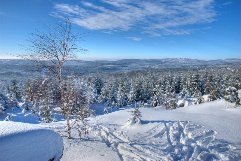 El Vlassky Ridge en las montañas de Jizera fotos de archivo libres de regalías
