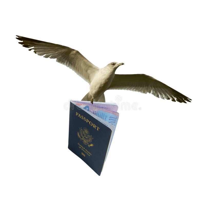 El volar con el pasaporte fotos de archivo libres de regalías