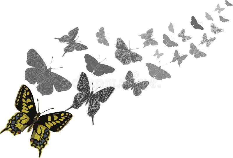 El volar de las mariposas stock de ilustración