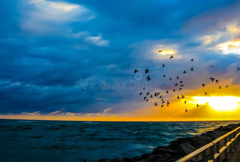 El volar sobre el embarcadero foto de archivo libre de regalías