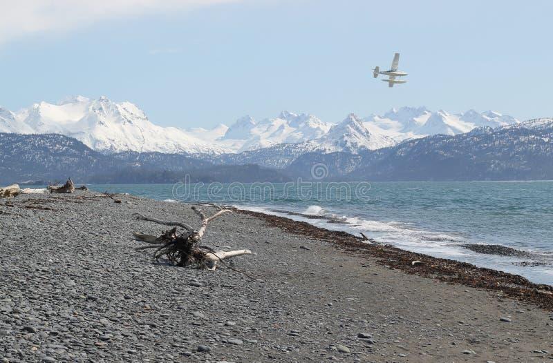 El volar sobre la bahía fotografía de archivo libre de regalías