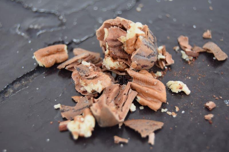 El wallnut sano y precioso imagenes de archivo