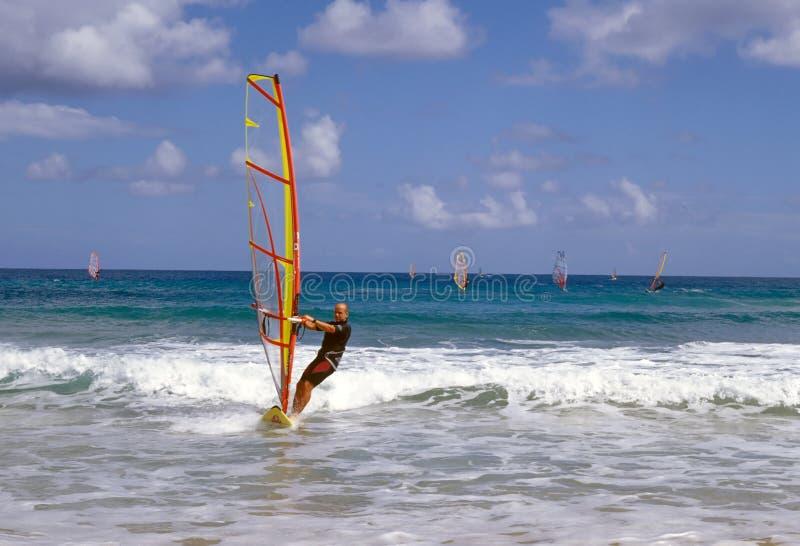El Windsurfing fotos de archivo