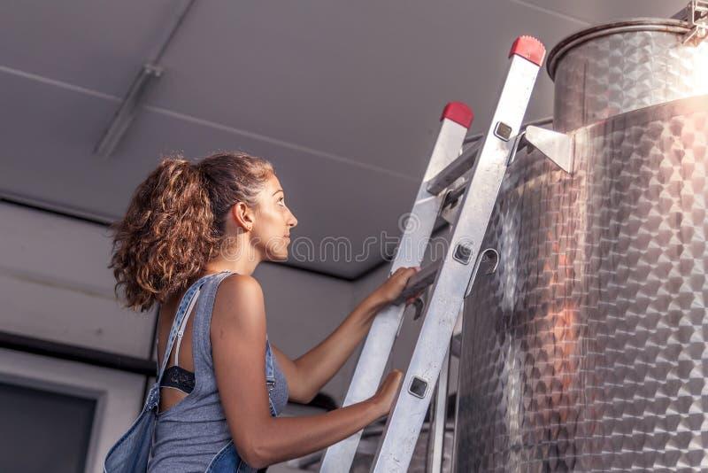 El winemaker femenino controla la calidad del vino fotografía de archivo libre de regalías