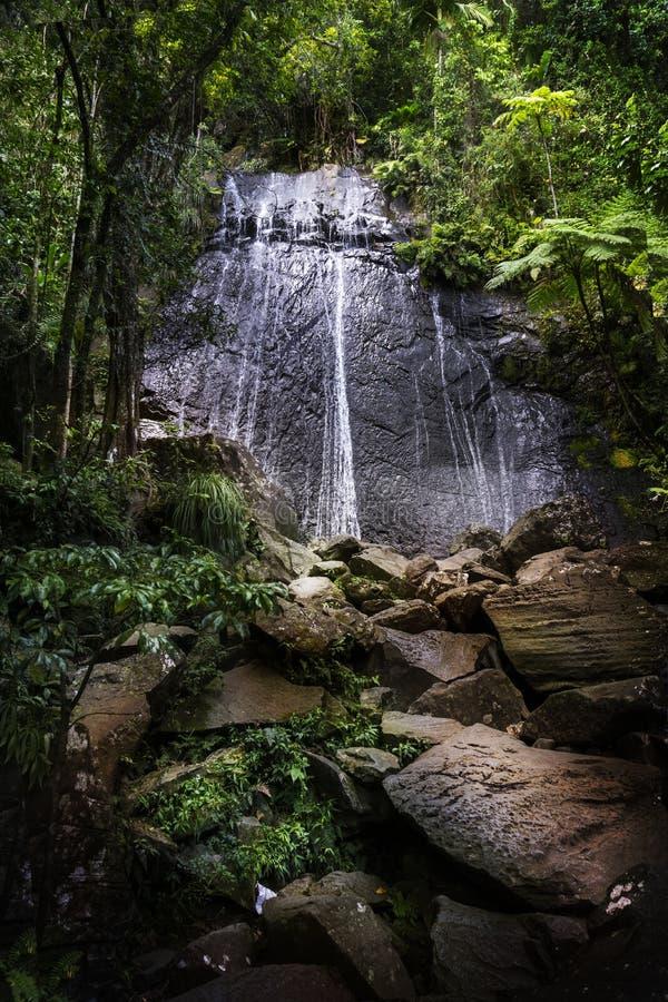 El Yunque La古柯瀑布 免版税图库摄影