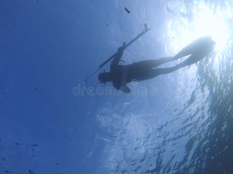 El zambullirse debajo del mar azul del agua imágenes de archivo libres de regalías
