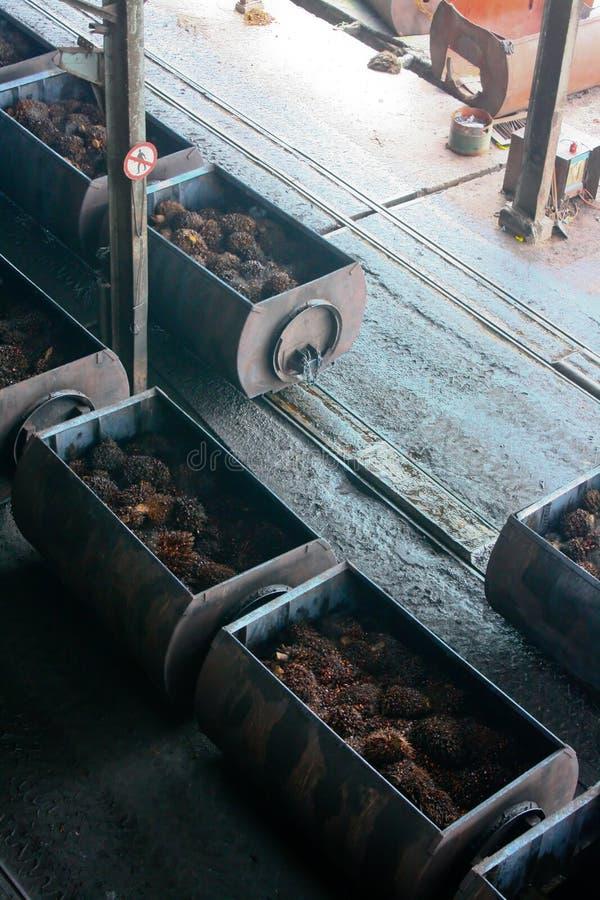 Elaborare dell'olio di palma fotografia stock libera da diritti