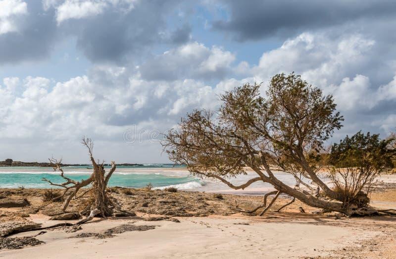 Elafonisi海滩在克利特在一晴朗,并且多云天 库存照片
