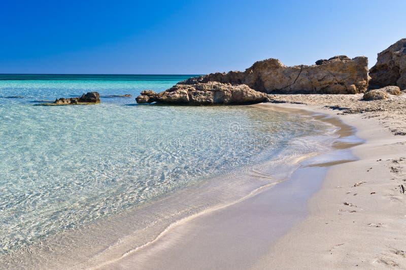 Elafonisi海滩,克利特海岛细节  免版税库存图片