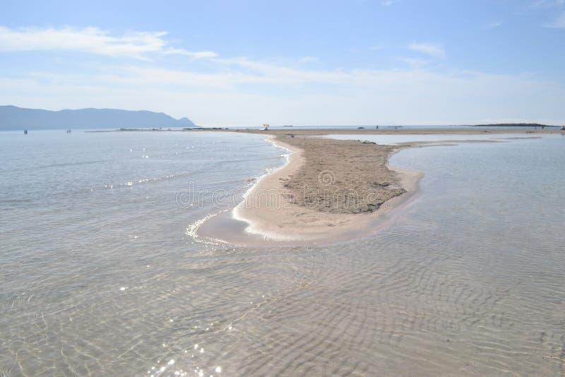 Elafonisi, остров оленей, как рай дальше стоковые изображения rf