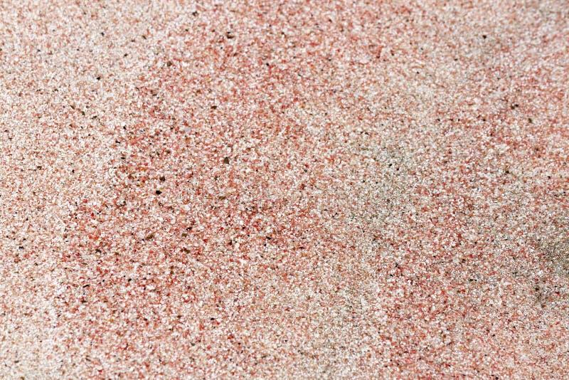 Elafonisi menchii plaża zdjęcie stock