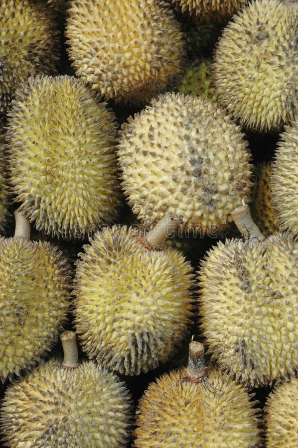 Elai, Tropical Fruits Like Durian Fruit Royalty Free Stock Images
