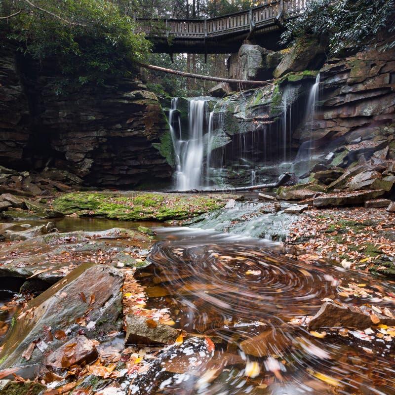 Elakala nedgångar - Canaan Valley, West Virginia arkivfoton