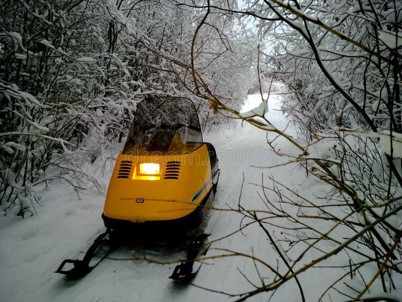 Elan Trail Ride arkivfoto
