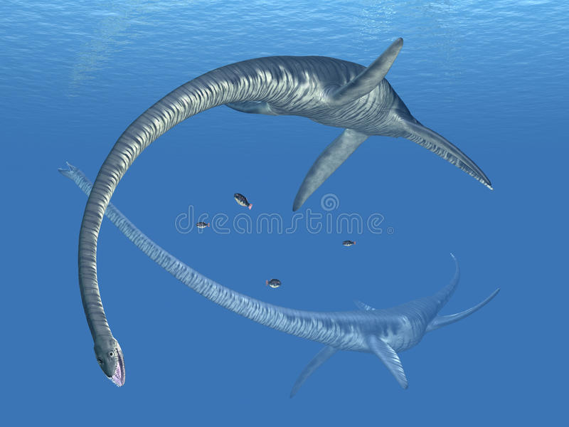 Elasmosaurus de Plesiosaur illustration de vecteur