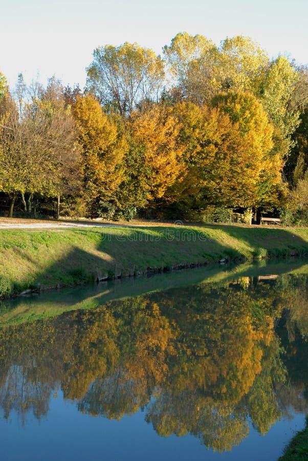 Elasticitet av floden Brenta nära Mira i landskapet av Venedig i Venetoen (Italien) royaltyfria bilder