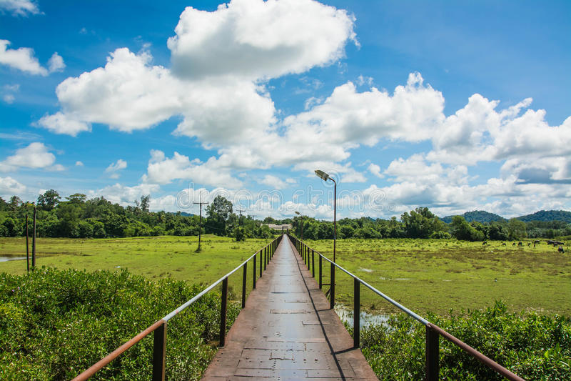 Żelazni Bridżowi punkty zwrotni przy Takuapa, Phang-Nga Tajlandia fotografia royalty free