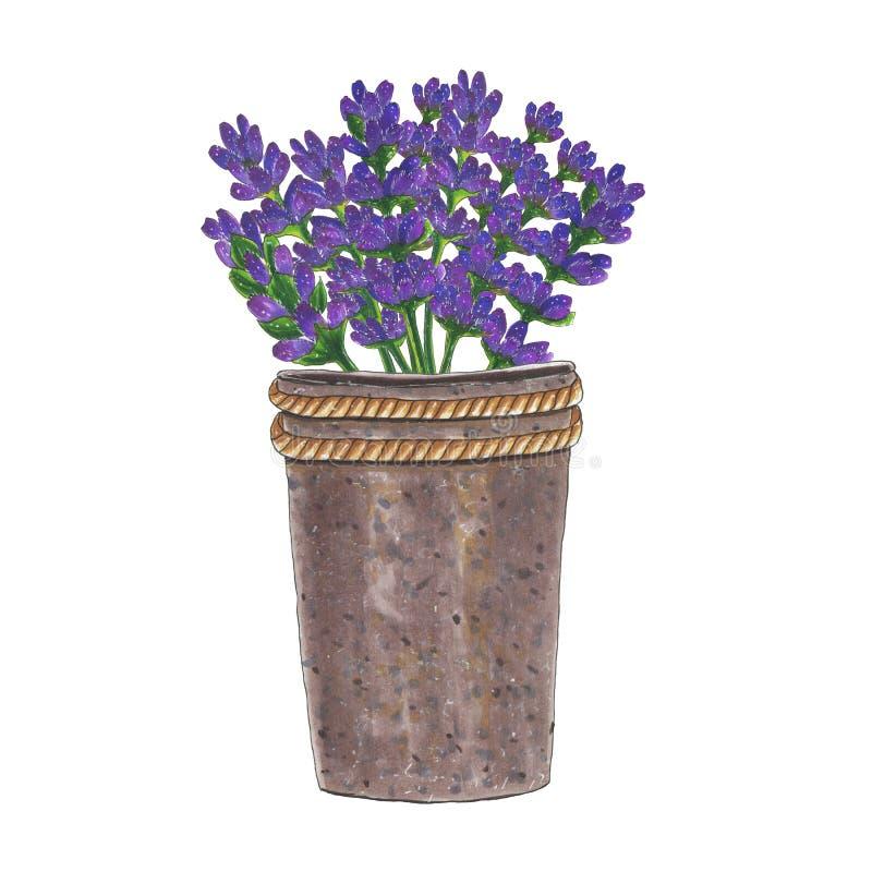 Żelazny wiadro z kwiatu bukietem lawendowa markier ilustracja obraz stock
