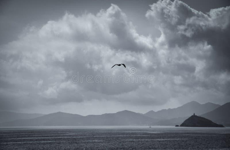 Elba Island images libres de droits
