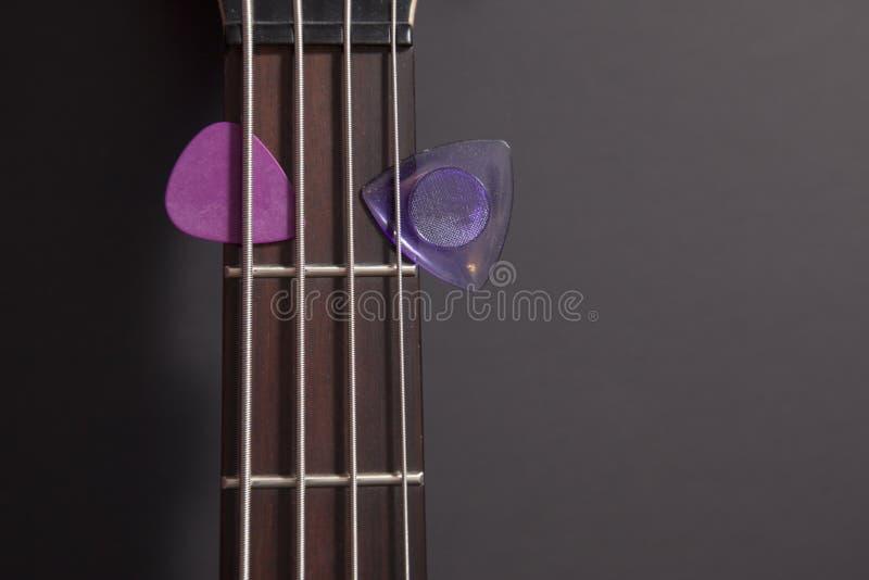 Elbashals med två purpurfärgade hackor arkivfoton