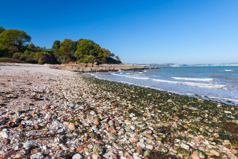 Elberry Cove Brixham Devon. The beautiful shingle beach at Elberry Cove Brixham Devon England UK Europe royalty free stock image