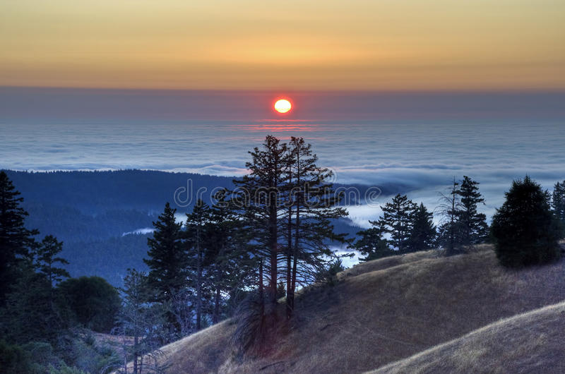 Elch-Nebenfluss-Sonnenuntergang stockbild