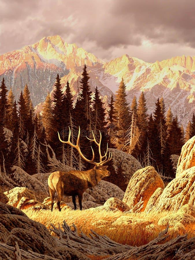 Elche Bull stockbilder