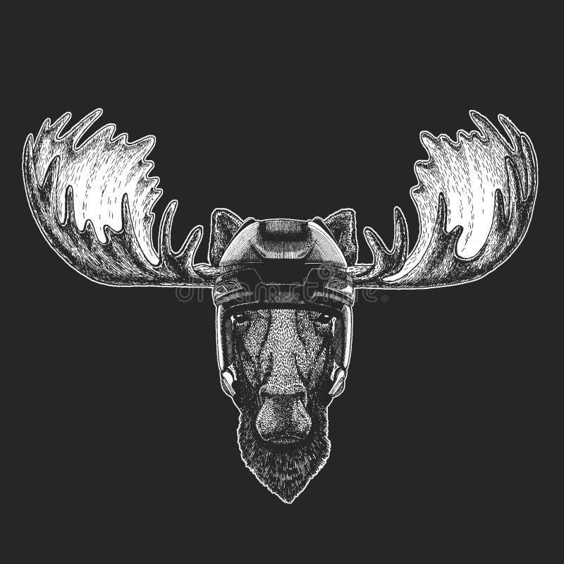 Elche, Hockeysturzhelm des wilden Tieres der Elche tragender Druck für T-Shirt Design stock abbildung
