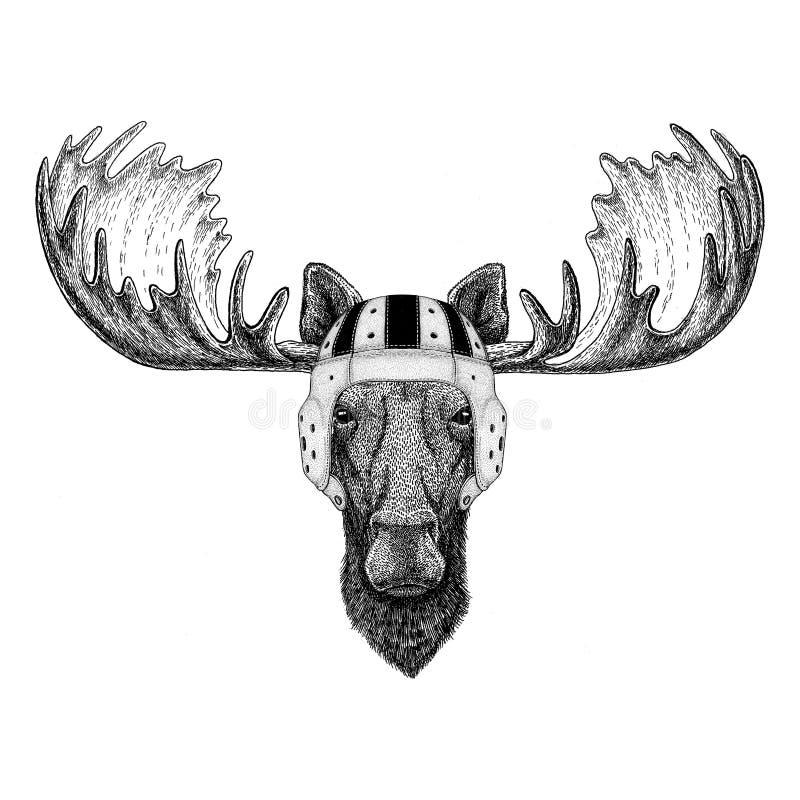 Elche, Rugbysturzhelm Sportillustration des wilden Tieres der Elche tragende vektor abbildung