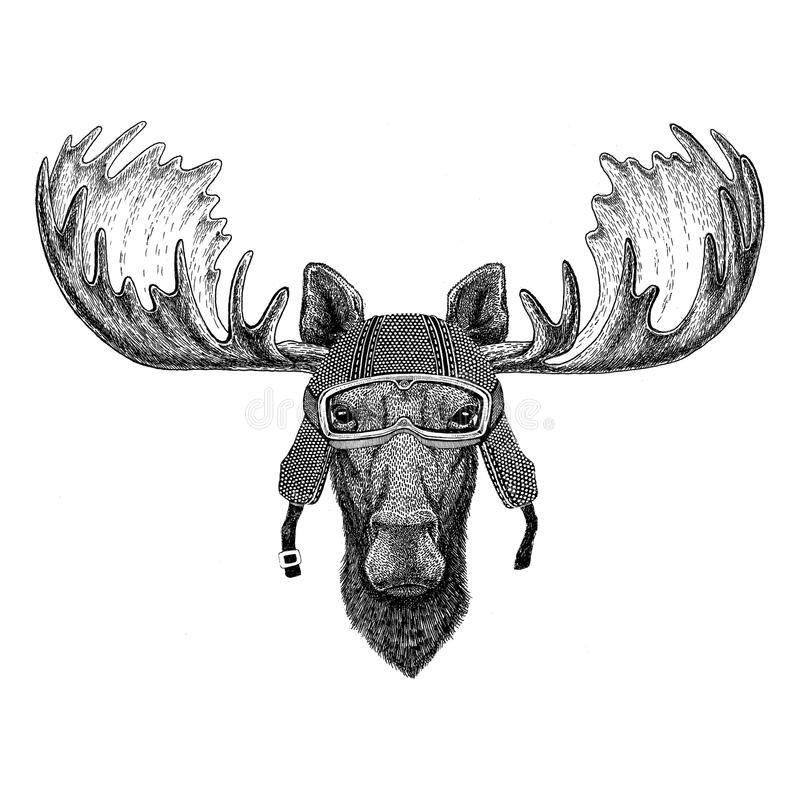 Elche, Weinlesemotorrad-Sturzhelm Tätowierung der Elche tragende, Ausweis, Emblem, Logo, Flecken, T-Shirt vektor abbildung