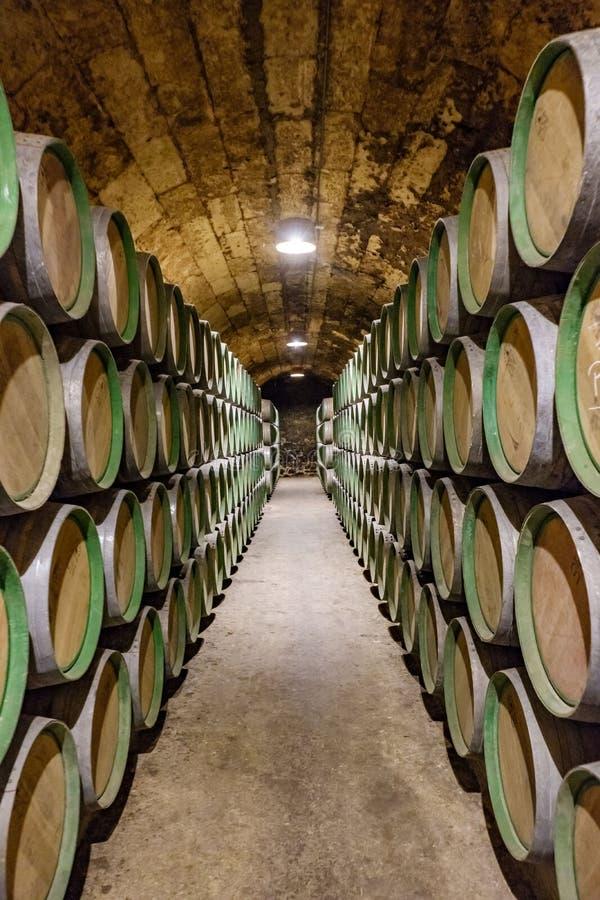 Elciego Ã-lava, Spanien April 23, 2018: Inre av vinkällarna kallade Marqués de Riscal med vin som åldras i ektrummor i D royaltyfri fotografi