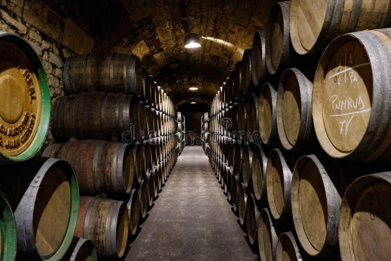 Elciego, lava do  de Ã, Espanha 23 de abril de 2018: O interior das adegas de vinho chamou Marqués de Riscal com envelhecimento imagem de stock royalty free