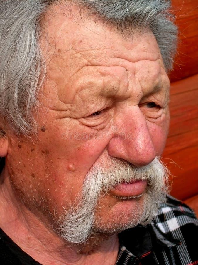 Download Elder man stock image. Image of person, melancholy, handsome - 730503