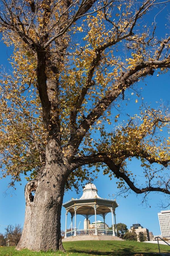 Elder Park, Adelaide, South Australia stock images