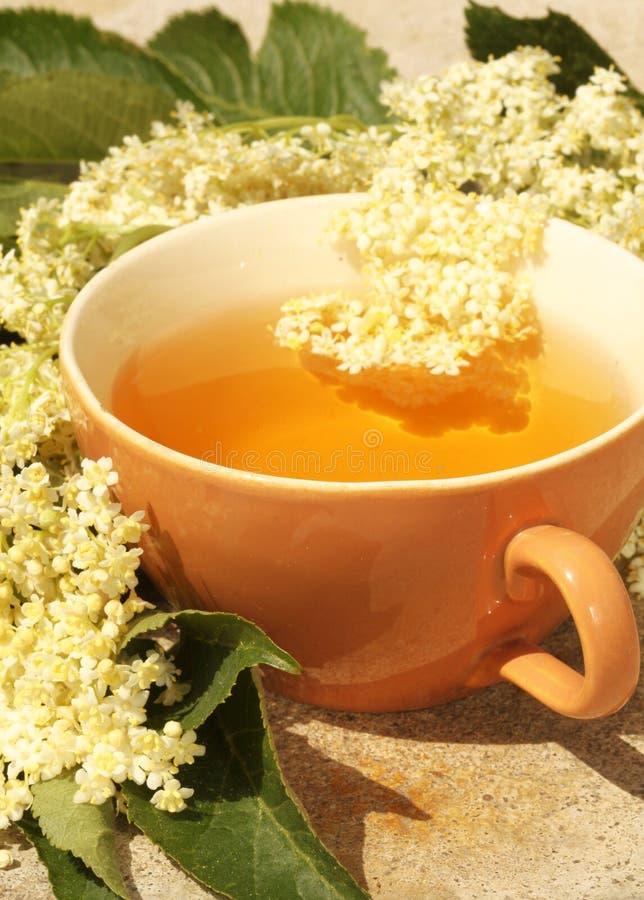 Elder Tea Stock Photos