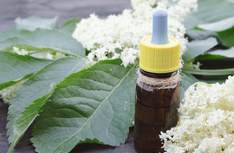 Elderberry разлил масло по бутылкам, свежие цветки стоковая фотография