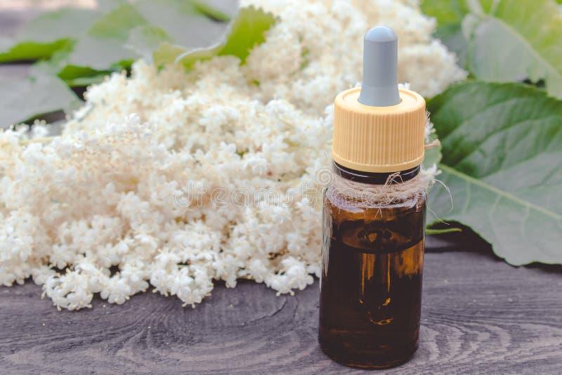 Elderberry butelkujący olej, świezi kwiaty fotografia royalty free