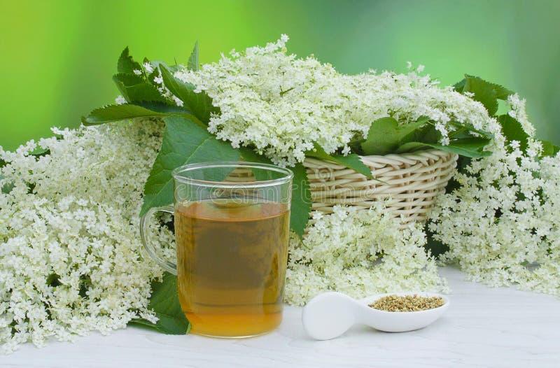 Elderberry flower tea and elderberry flowers stock photo