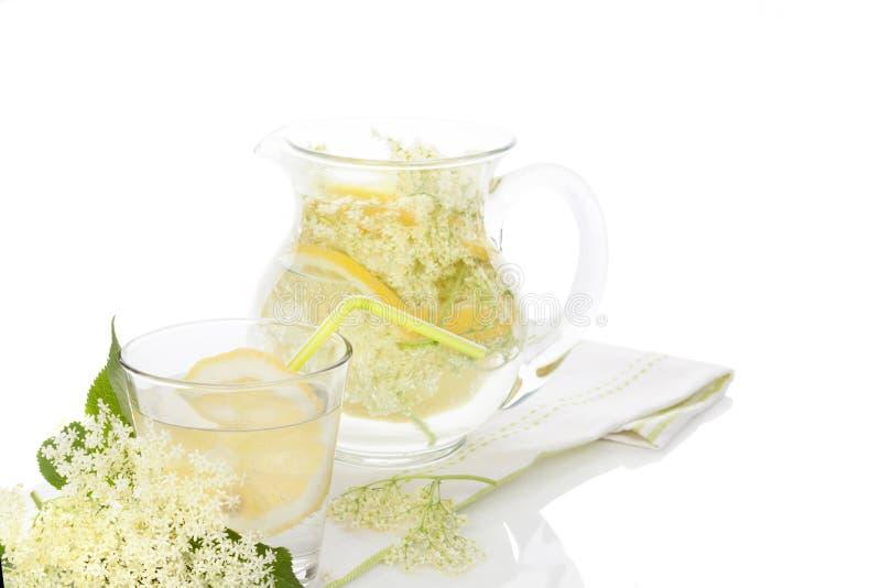 Elderberry lemonade. royalty free stock images