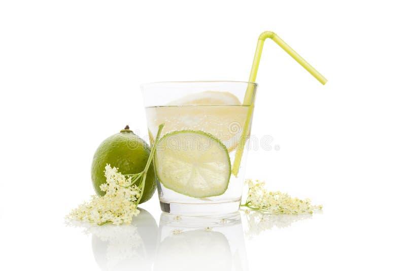 Elderberry lemonade. stock photography