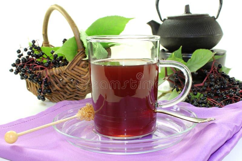 Elderberry tea stock image