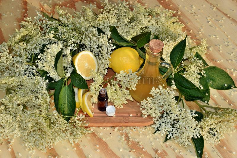 Elderflower油 免版税库存图片