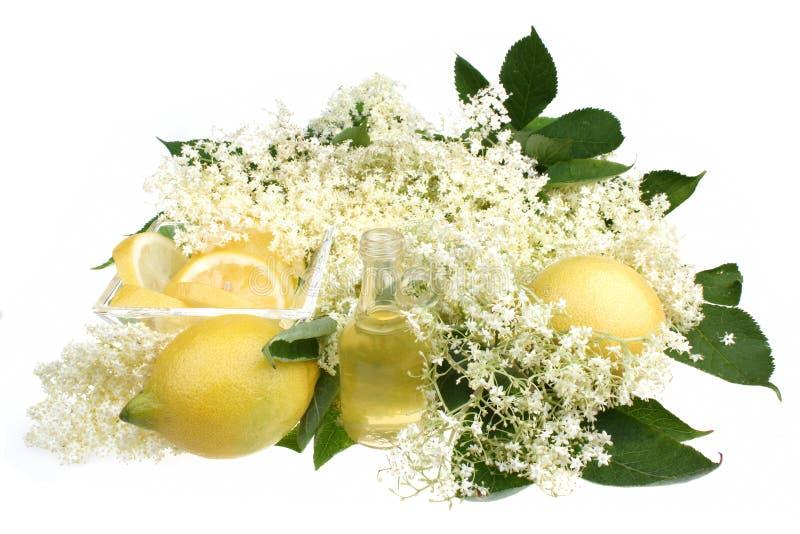 Elderflower饮料 库存图片
