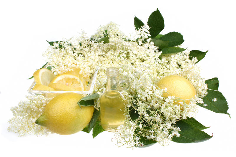 Elderflower drink. Elderflower healthy and refreshing summer drink stock images
