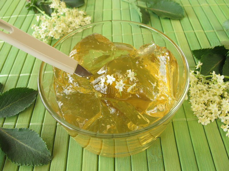 Elderflower jam. And fresh elderflowers royalty free stock photos