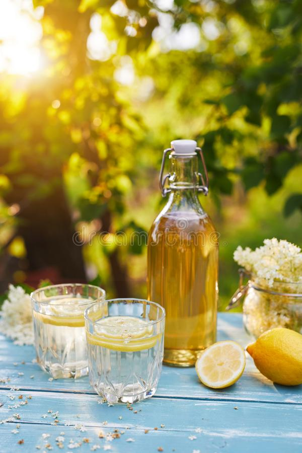 Elderflower lemonade with bottle of syrup and elderberry flowers royalty free stock photography