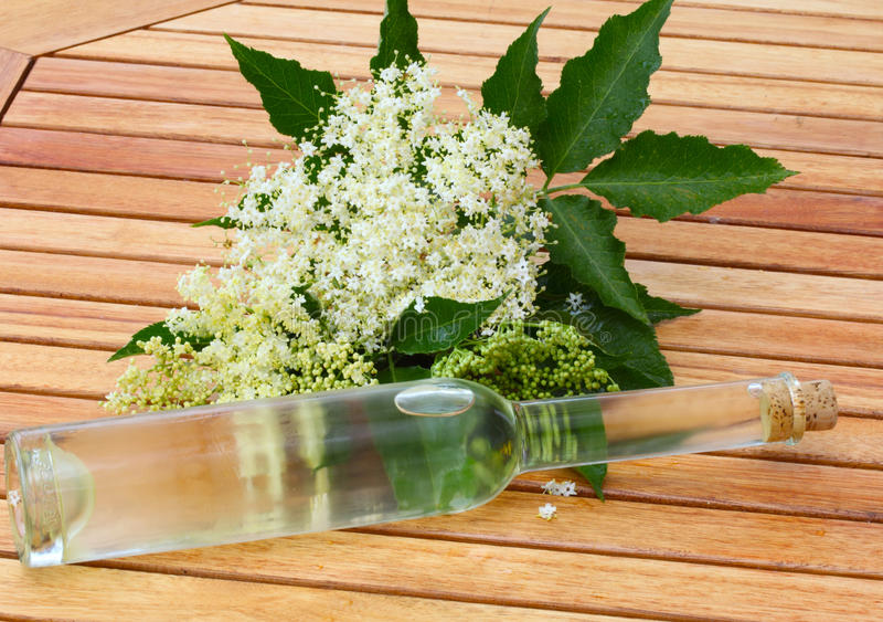 Elderflower liqueur stock photography