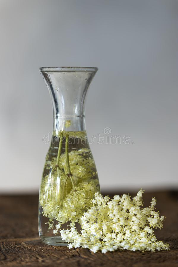 Elderflower sok obrazy royalty free