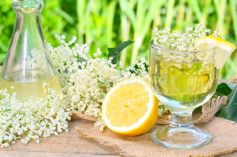 Elderflower syrup. From fresh elderflower and lemon stock photography