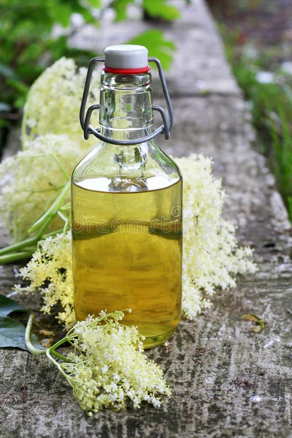 Elderflower syrup. (sambucus nigra) - natural medicine royalty free stock photos
